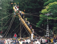 """Tate Onbashira,"" the finale after the month-long Onbashira Festival, is the erecting of the Onbashira (sacred pillar) at the corners of Maemiya Shrine and Honmiya Shrine of Kamisha. It takes place on both May 3-4 at Shimosha, on May 8-9 at Harumiya and May 10 at Akimiya. Photo: Suwa Sightseeing Federation"