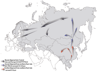 Figure 4. Proposed prehistoric migration routes for Hg N lineage. The shaded areas represent the haplogroup N distributions